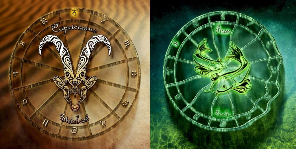 Гороскоп совместимости знаков зодиака: Козерог и Рыбы