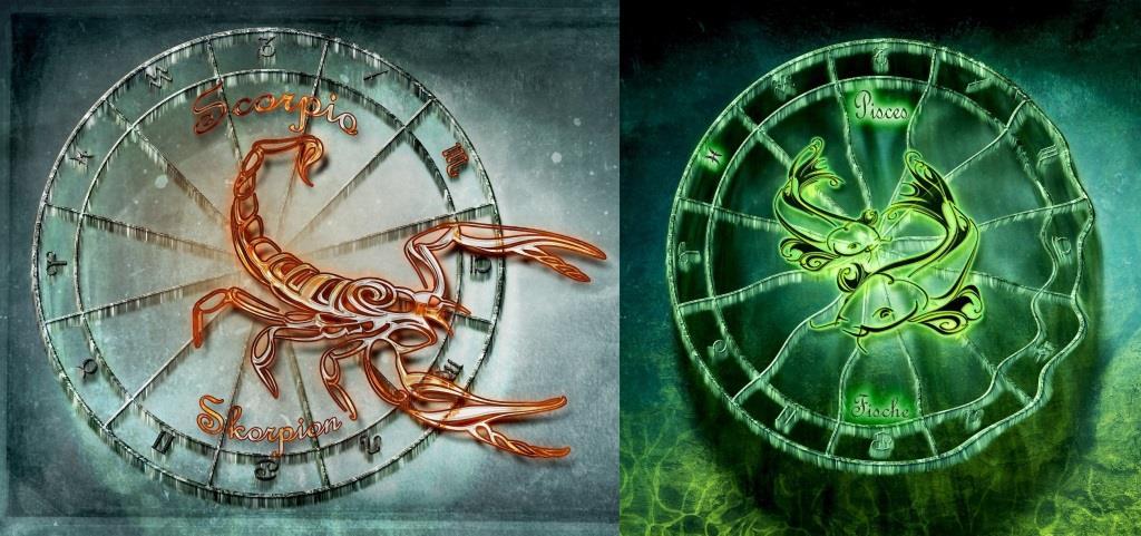 Гороскоп совместимости Скорпион и Рыбы. Совместимость знаков зодиака Скорпион и Рыбы