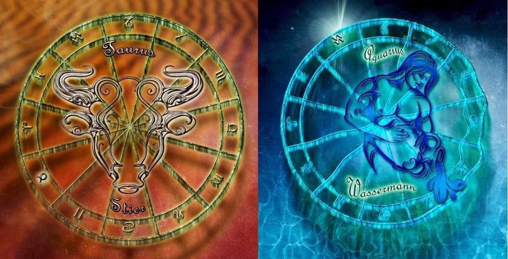 Гороскоп совместимости Телец и Водолей. Совместимость знаков зодиака Телец и Водолей