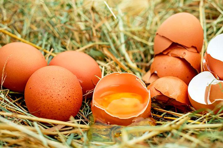 Сонник яйца куриные сырые разбитые и целые