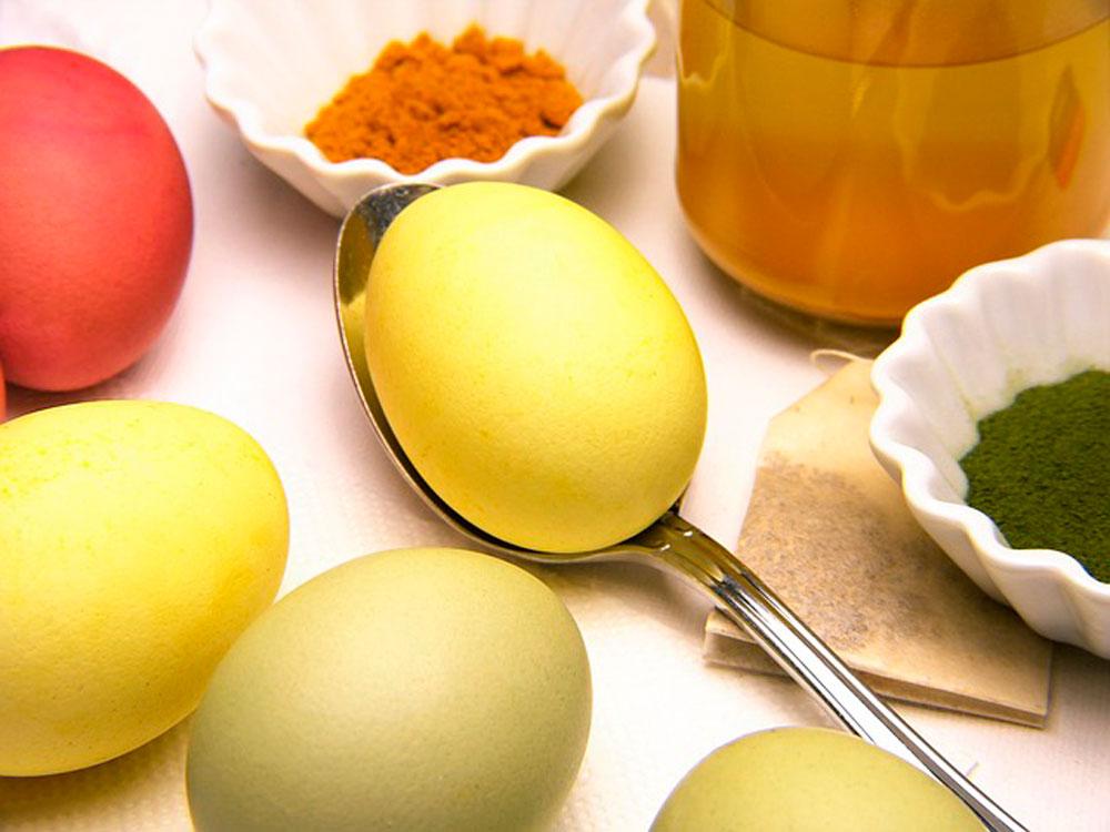 Сонник собирать яйца к чему снится собирать яйца во сне